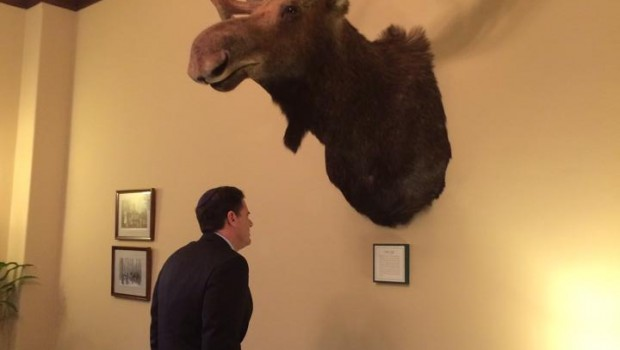 Ambassador Ron Dermer and moose. Photo from Dermer's Facebook