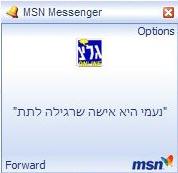 נעמי היא אישה שרגילה לתת. צילומסך מ-MSN מסנג'ר