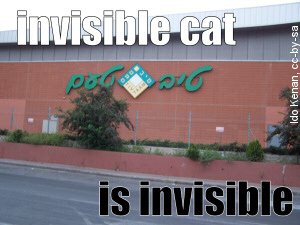 invisible-tiv-taam-3001.jpg