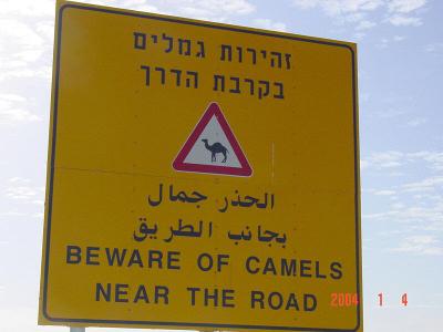 """שלט """"זהירות גמלים"""". צילום: The Minister of War, cc-by"""