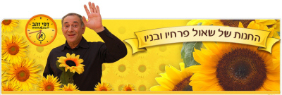 שאול פרחיו באתר d.co.il