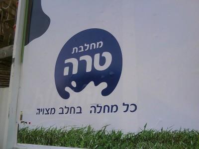 """""""כל מחלה בחלב מצויה"""", שיבוש מודעה של טרה בבן יהודה פינת שינקין בתל אביב. צילום: שונית"""