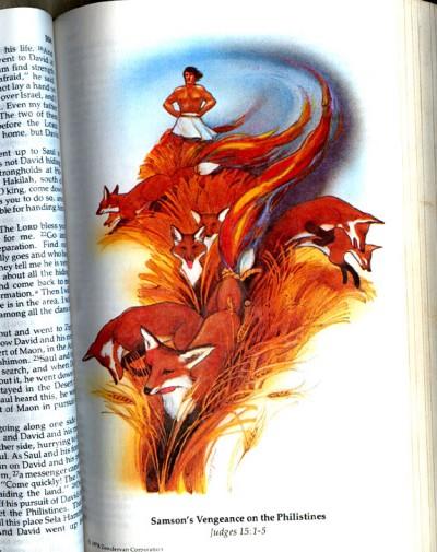 """איור השועלים בתנ""""ךל לילדים שבבעלות דניאל בורקה, שנתן לו השראה ללוגו של דפדפן פיירפוקס"""
