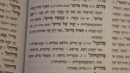 הגדרת סדום וסדומיות במילון אבן שושן המרוכז - מחודש ומעודכן לשנות האלפיים