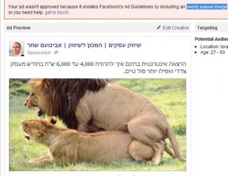 מודעה של אבינועם שחר עם תמונה של אריות מזדווגים, שנפסלה לפרסום בפייסבוק