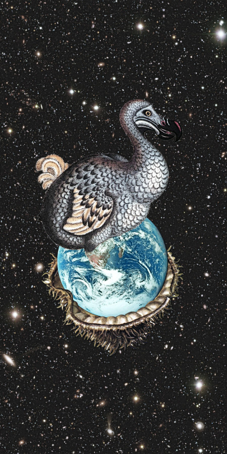 Way of the Dodo. איור: Eugenia Loli (cc-by-nc)