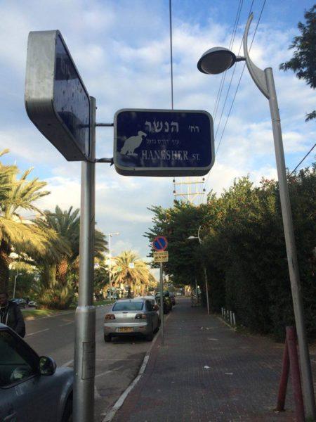 צללית נשר ש'המשלטת' הדביקה על שלט רחוב בחולון. צילום: המשלטת
