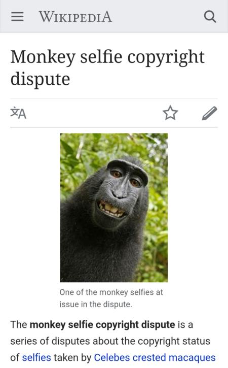 סלפי הקופה נארוטו בוויקיפדיה