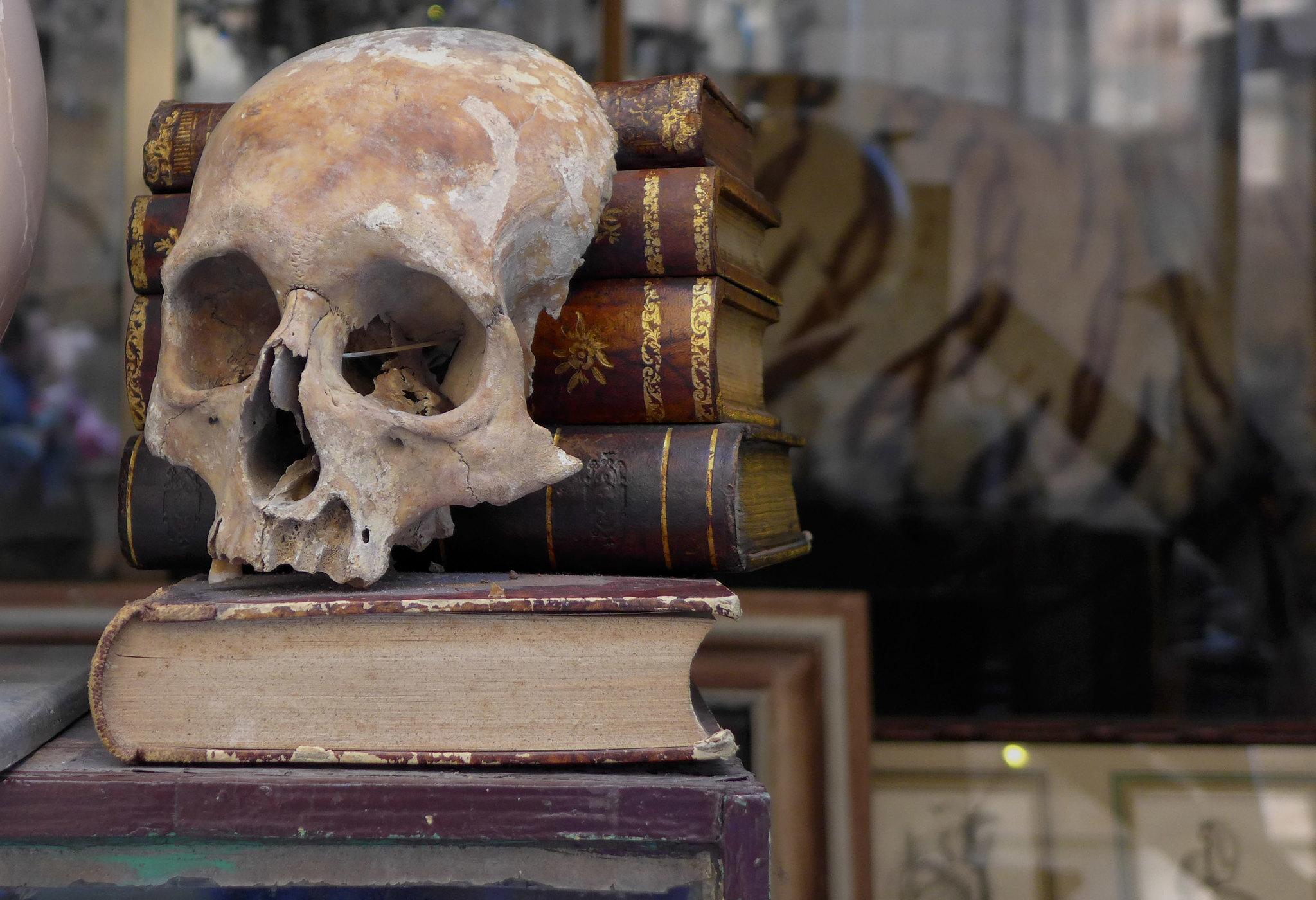 גולגולת וספרים 📸 Dystopos (cc-by-nc)